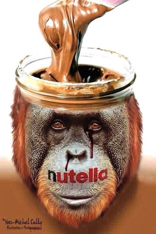Nutella é responsável por desmatamento e morte de orangotangos
