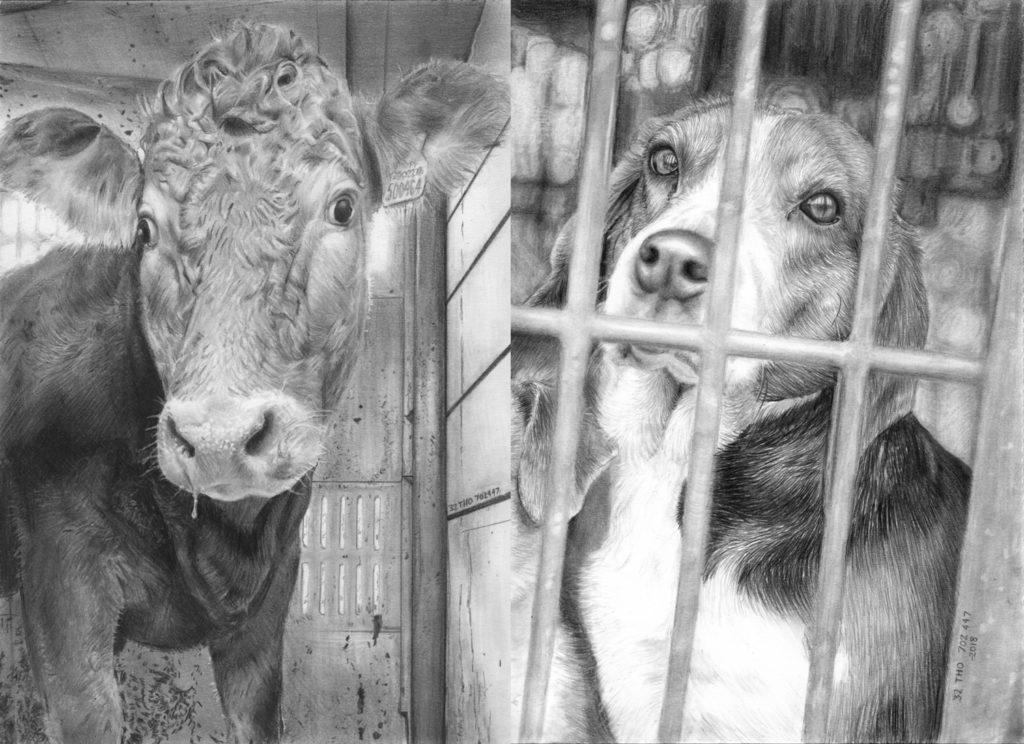 Artista inglês registra expressões dos animais que matamos