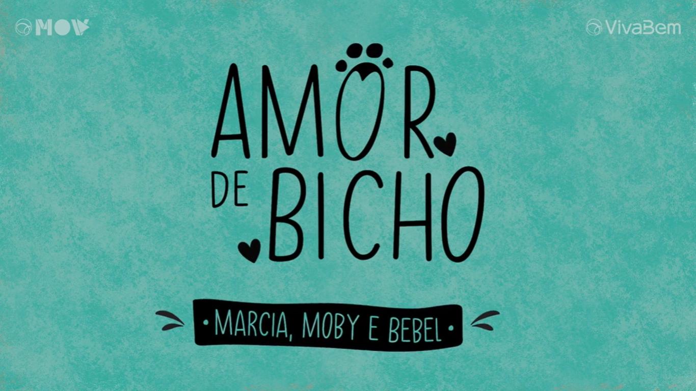 AMOR DE BICHO